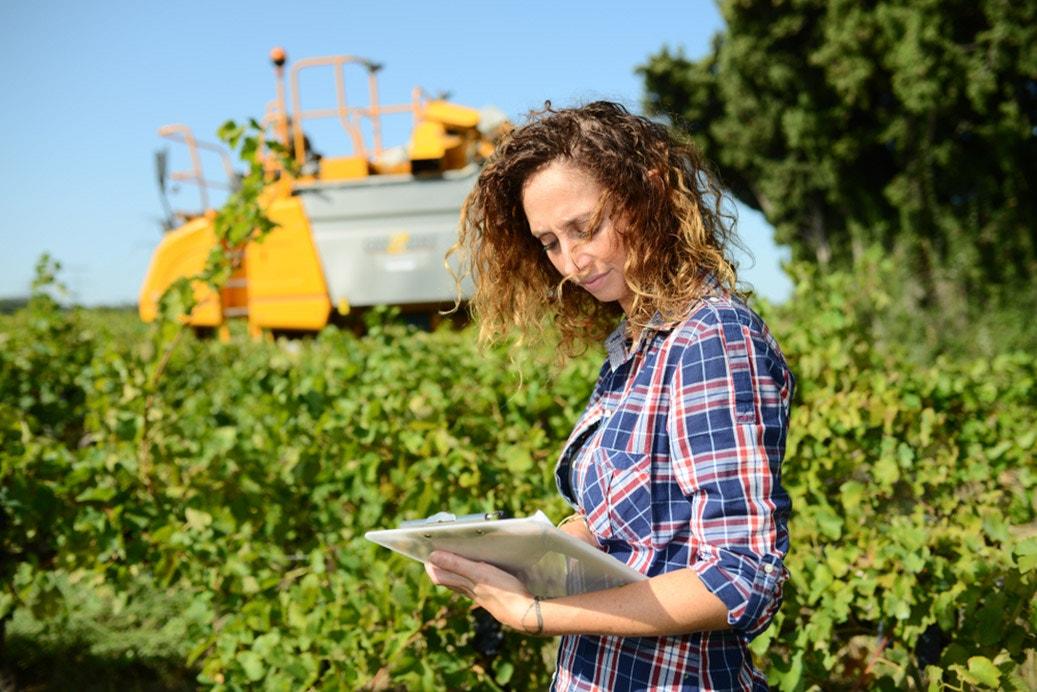 agriculture engineer vineyard